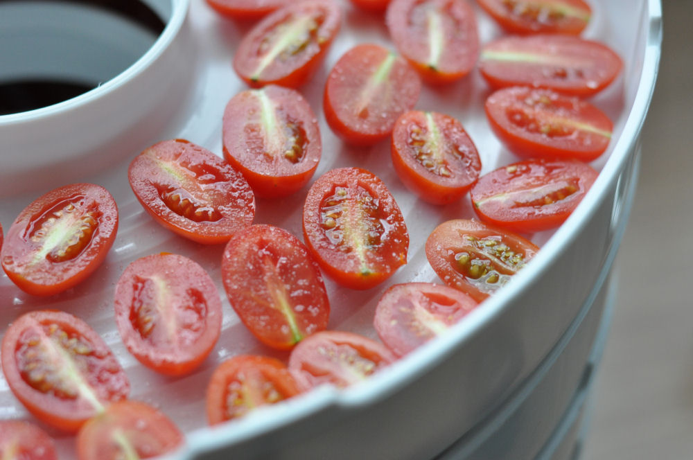 Kirschtomaten im Dörrautomat Getrocknete Kirschtomaten-GetrockneteTomaten02-Getrocknete Kirschtomaten / eingelegte Tomaten