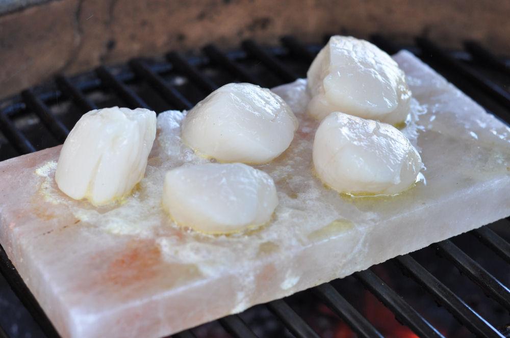 Jakobsmuscheln auf der Salzplanke Jakobsmuscheln-Jakobsmuscheln02-Jakobsmuscheln von der Salzplanke mit Orangen-Feldsalat