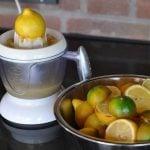 Grilled Lemonade grilled lemonade-GrilledLemonade06 150x150-Grilled Lemonade / Limonade mit gegrillten Zitronen