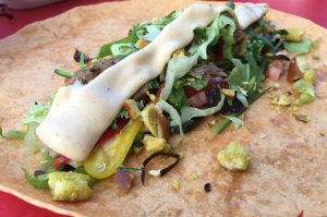 Alligator-Wrap-AlligatorWrap04 300x199-Alligator-Wrap – Alligator grillen in Florida