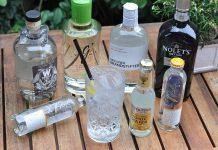 Die besten Gins und Tonic Water