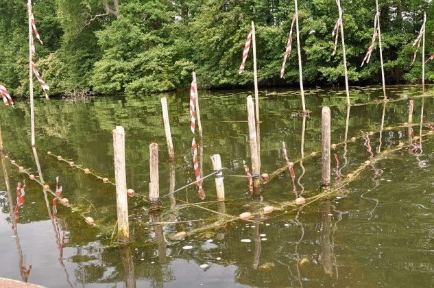 fischerei am wolziger see-Fischerei Wolziger See Blossin 21 633x420-Fischerei am Wolziger See in Blossin bei Berlin