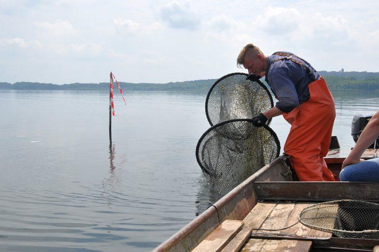 Fischerei am Wolziger See in Blossin bei Berlin