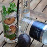 vodka tonic-Vodka Tonic Vodrock gegrillte Pflaume Minze 04 150x150-Vodka Tonic – Vodrock mit Tonic, gegrillter Pflaume und Minze