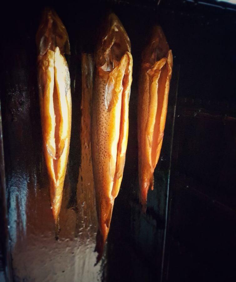 Fisch räuchern geräucherte forellen-Geraeucherte Forellen Anleitung Fische raeuchern 05-Geräucherte Forellen – Anleitung Fisch räuchern