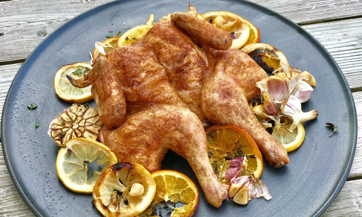 Platthuhn roadkill chicken-Roadkill Chicken Platthuhn-Roadkill Chicken – Platthuhn auf Zitrusfrüchten