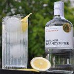 Gin Fizz gin fizz-GinFizz 150x150-Gin Fizz – der erfrischende Cocktail-Klassiker