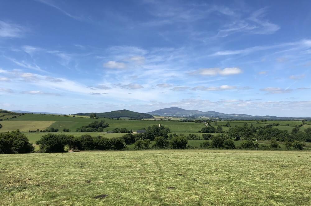 Unendliche Weiten auf den Farmen Irlands irland-reise-Kerrygold Bloggerreise Irland Weidehaltung Rinderzucht 09-Irland-Reise 2018 mit Kerrygold