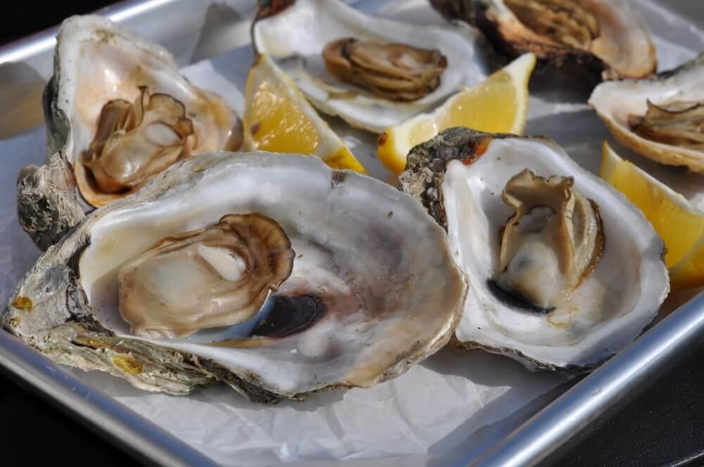 Gegrillte Austern mit Zitrone gegrillte austern-Gegrillte Austern vom Grill 03-Gegrillte Austern – So gelingen Austern vom Grill