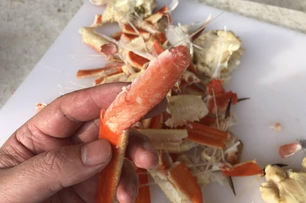 Das Krabbenfleisch wird vorsichtig aud dem Panzer gezogen schneekrabbe-Schneekrabbe Snow Crab Legs 05-Schneekrabbe – Snow Crab Legs vom Grill schneekrabbe-Schneekrabbe Snow Crab Legs 05-Schneekrabbe – Snow Crab Legs vom Grill
