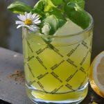 gin basil smash-Gin Basil Smash Cocktail 03 150x150-Gin Basil Smash – Gin-Cocktail mit Basilikum