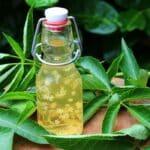 Holunderblütenessig Rezept holunderblütenessig-Holunderbluetenessig selber machen 150x150-Holunderblütenessig selber machen