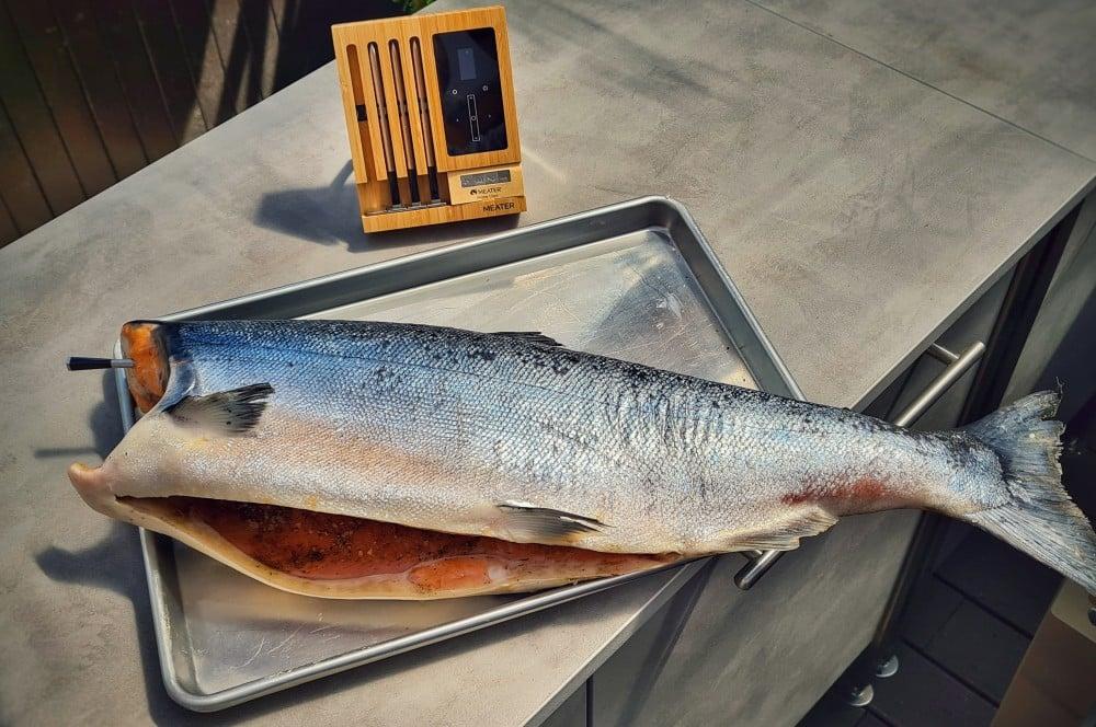 Die Kerntemperatur wird an der dicksten Stelle des Fisches gemessen ganzer geräucherter wildlachs-Ganzer geraeucherter Lachs 04-Ganzer geräucherter Wildlachs ganzer geräucherter wildlachs-Ganzer geraeucherter Lachs 04-Ganzer geräucherter Wildlachs